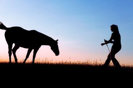 Låna pengar till köp av häst